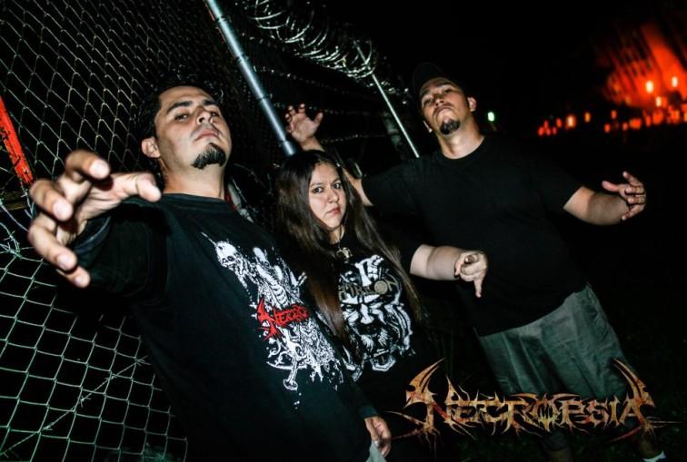 Necropsia - Photo