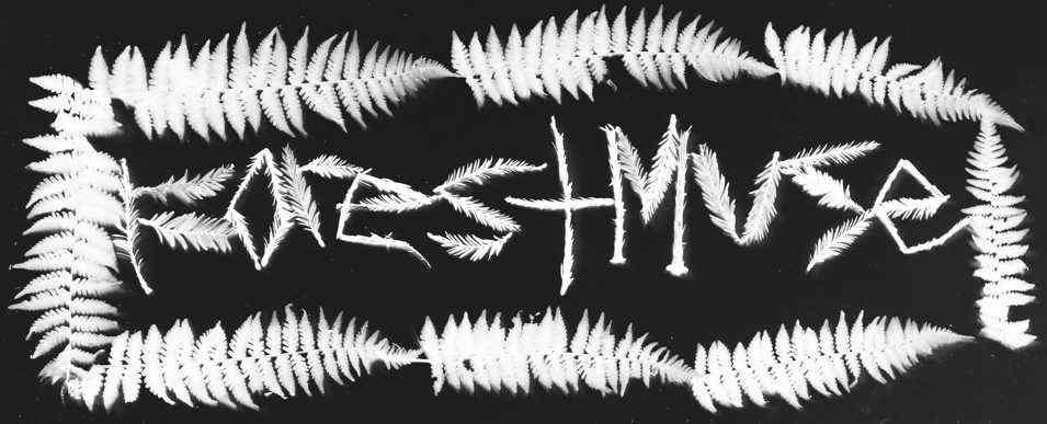 Forestmuse - Logo
