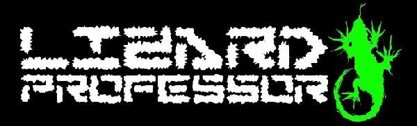 Lizard Professor - Logo