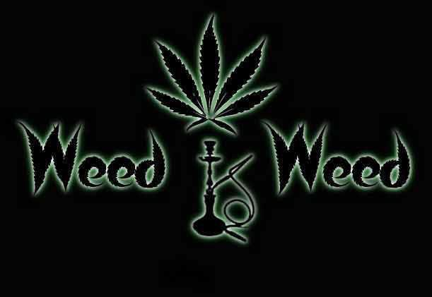 Weed Is Weed - Logo
