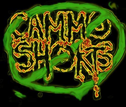 Cammo Shorts - Logo