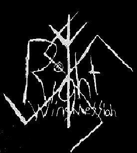 Right Wing Messiah - Logo