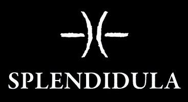 Splendidula - Logo