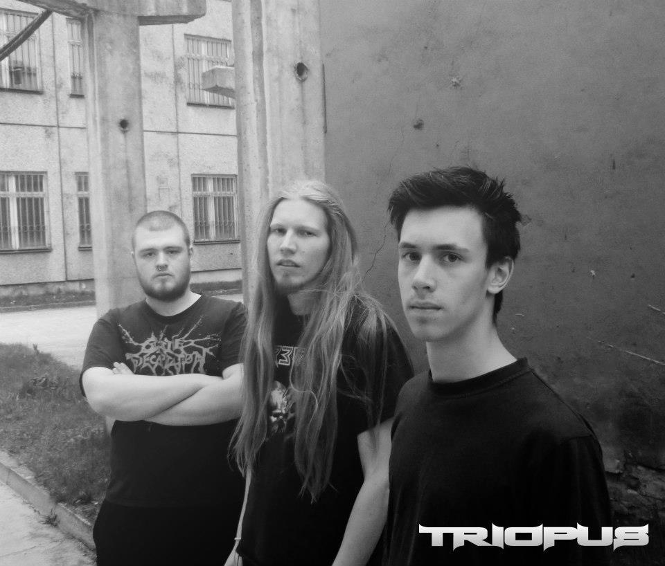 Triopus - Photo