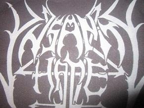 Ynsanity Hate - Logo