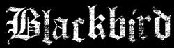 Blackbird - Logo