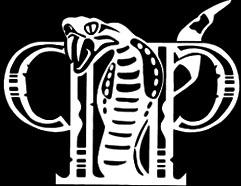 Painful Pride - Logo