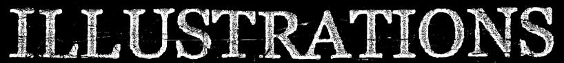 Illustrations - Logo