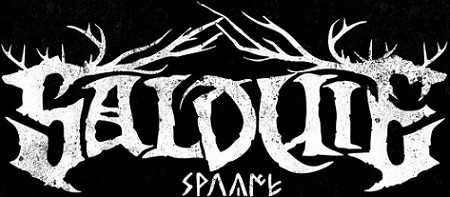 Salduie - Logo