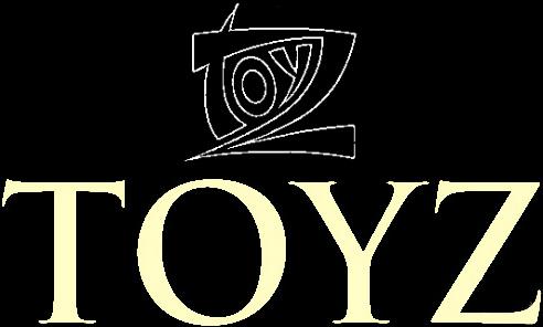 Toyz - Logo