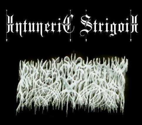 Intuneric Strigoii - Logo