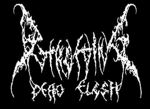 Putrefying Dead Flesh - Logo