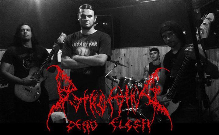 Putrefying Dead Flesh - Photo