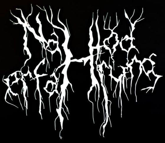 Nahtoderfahrung - Logo