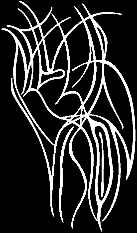 Nebular Vision - Logo