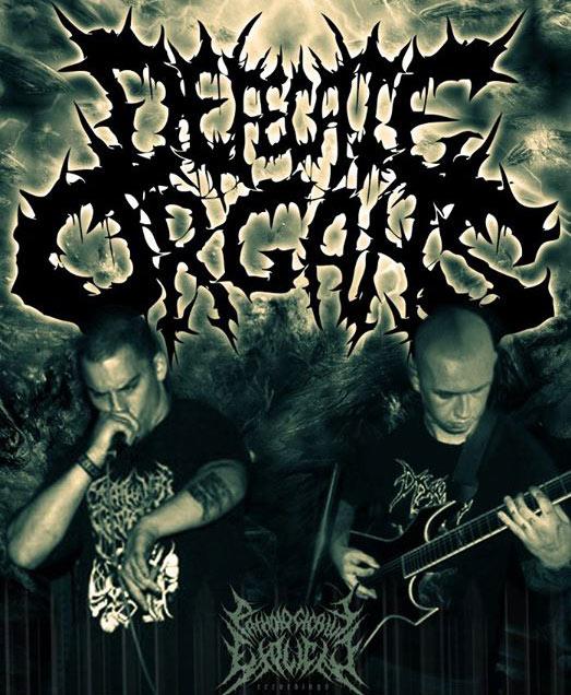 Defecate Organs - Photo