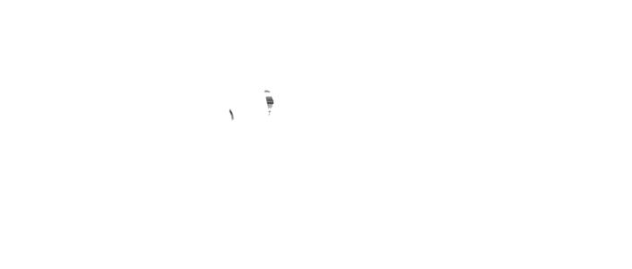 Cariosus - Logo