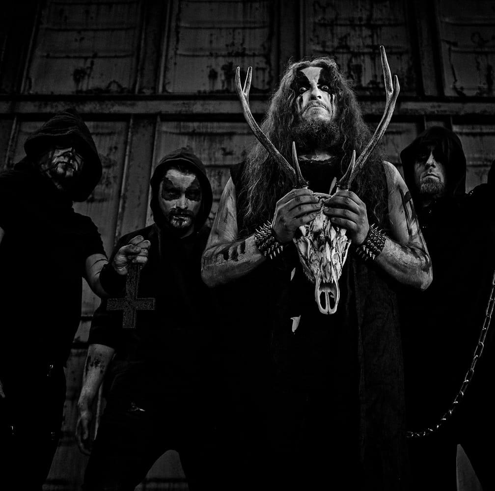 Horns - Photo