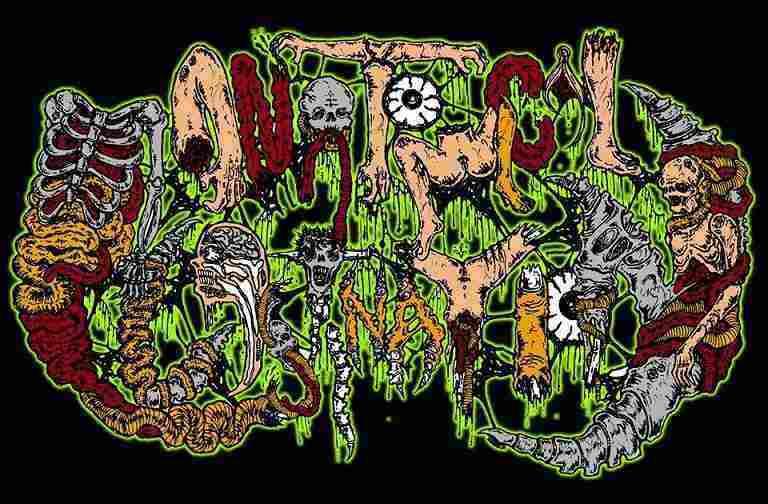 Anatomical Plastination - Logo