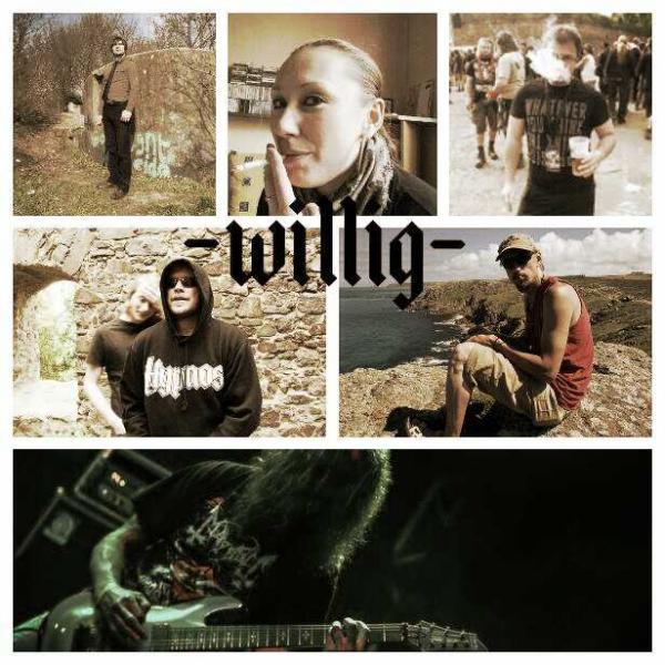 Willig - Photo
