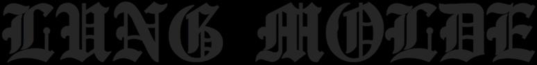 Lung Molde - Logo