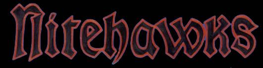 Nitehawks - Logo