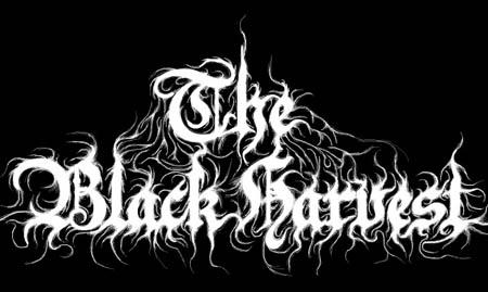 The Black Harvest - Logo
