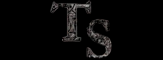 TS - Logo