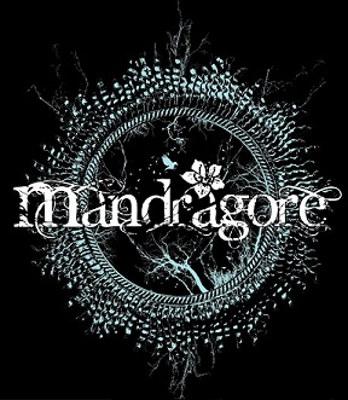 Mandragore - Logo