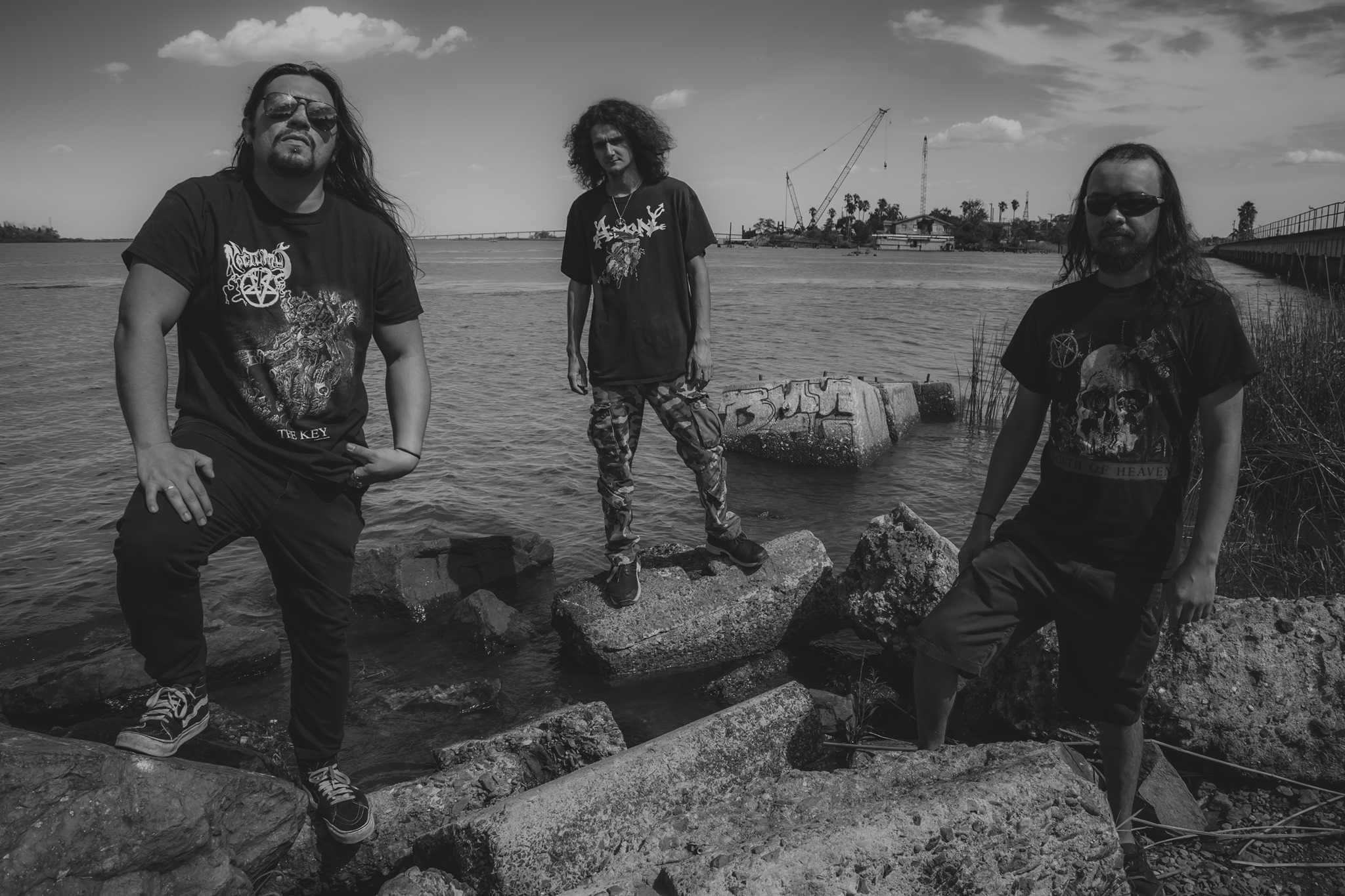 Dismembered Carnage - Photo