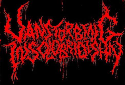 Vanstorbing Insolobridishn - Logo