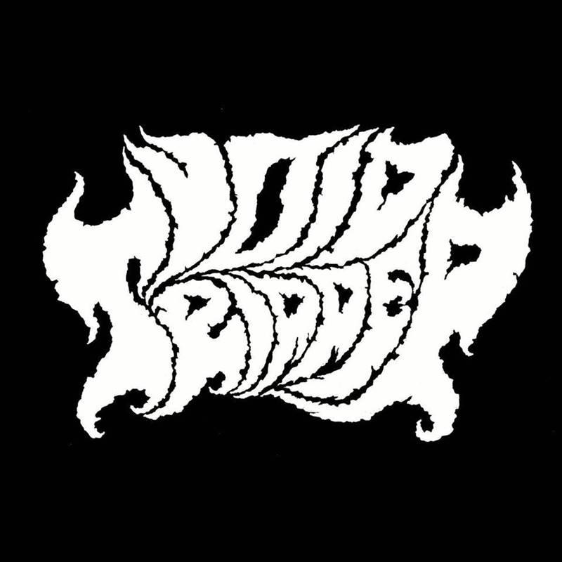 Void Tripper - Logo
