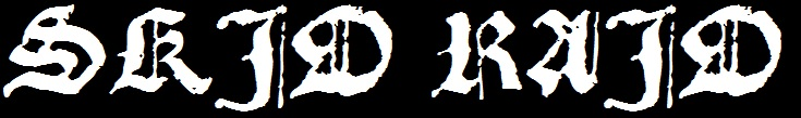 Skid Raid - Logo