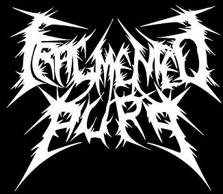 Fragmented Aura - Logo