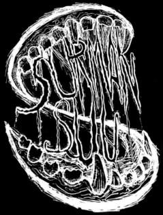 Surman Suu - Logo
