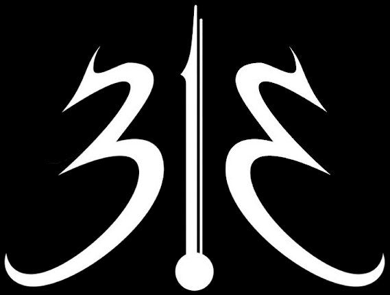 313 - Logo