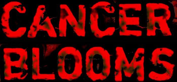 Cancer Blooms - Logo