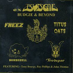 Tredegar - Ex-Budgie: Budgie and Beyond