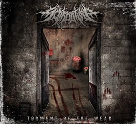 Scordatura - Torment of the Weak
