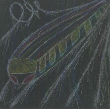 Angew - A Dream Voyage