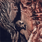 Sacred Crucifix - Promo 2003