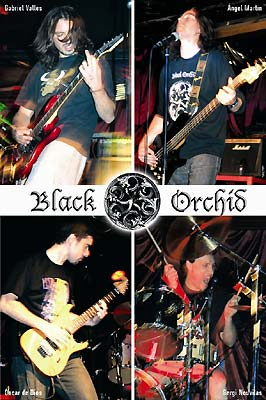 Black Orchid - Photo