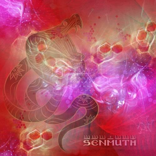 Senmuth - 111 111 111 х 111 111 111