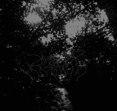 When Woods Make Graves - This Forest That Will Eclipse the Sky