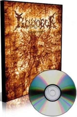 Radogor - Microcosmos