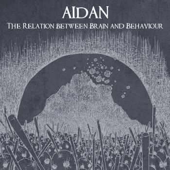 Aidan - The Relation Between Brain and Behaviour