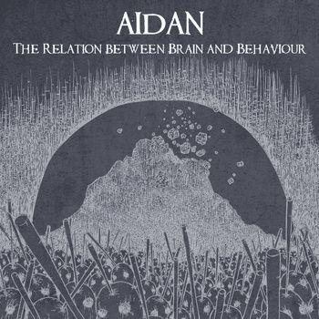 Aidan - The Relation Between Brain and Behaviour