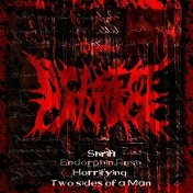 In Case of Carnage - Demo 2012