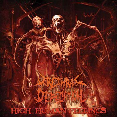 Urethral Defecation - High Human Feelings
