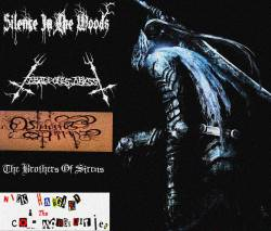 The Brothers of Sirens / Abaddon's Abyss / Nick Haggard and the Co-Morbidities - Wings of Black Crusader